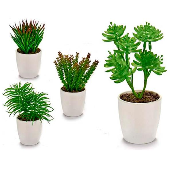 Mini Planta Decoracion (Surtida)