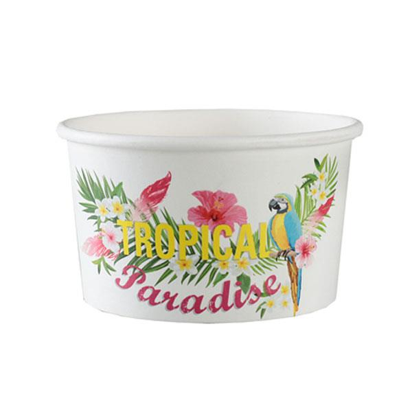Tarrinas Helado Tropical Paradise (Pack de 10)